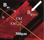 Room-Temperature Operation of a Radiofrequency Diamond Magnetometer near the Shot-Noise Limit